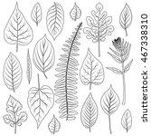 vector leaves silhouette set... | Shutterstock .eps vector #467338310