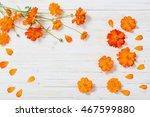 orange summer flowers on white... | Shutterstock . vector #467599880