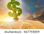 Dollar Sign Made Of Green Grass ...