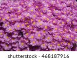 a massive group of pink flowers ... | Shutterstock . vector #468187916