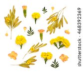 isolated yellow meadow flowers...   Shutterstock . vector #468392369