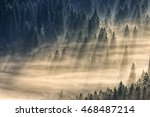 spruce trees in a foggy valley lightened by sun rays. view from the top - stock photo