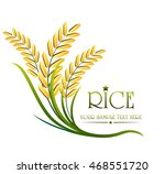grain organic natural product... | Shutterstock .eps vector #468551720