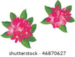 illustration with pink flowers... | Shutterstock .eps vector #46870627