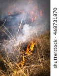 Small photo of Australian bush grass fire controlled burn off to reduce flammable fuel in the bush fire season drier months