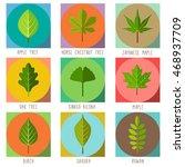 Set Of Flat Trees Leaves. Apple ...