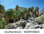 49 palms oasis in joshua tree...   Shutterstock . vector #468944864