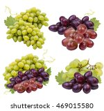 green and red ripe grape... | Shutterstock . vector #469015580