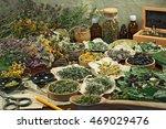 set healing herbs. dried herbs... | Shutterstock . vector #469029476