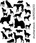 illustration with dog... | Shutterstock .eps vector #469053653