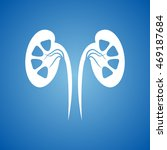kidneys icon on blue color. | Shutterstock .eps vector #469187684