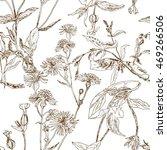 grass meadow  seamless pattern  ... | Shutterstock .eps vector #469266506
