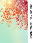 autumn trees leaves. beautiful... | Shutterstock . vector #469435400