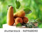 Small photo of Ripe Abate Fetel pears on green background