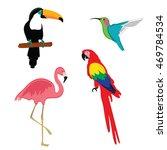 vector illustration pink... | Shutterstock .eps vector #469784534