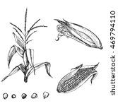 hand drawn vector illustration... | Shutterstock .eps vector #469794110