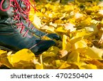 Fall  Autumn  Leaves  Legs And...
