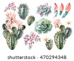 watercolor set with succulents... | Shutterstock . vector #470294348