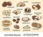 nuts vector set  big color... | Shutterstock .eps vector #470555999