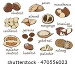 nuts set  colorful vector... | Shutterstock .eps vector #470556023