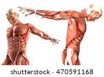 3d render of a medical figure... | Shutterstock . vector #470591168