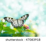 Beauty Butterfly On Leaf. Smal...
