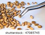wheat seeds analyzed on... | Shutterstock . vector #47085745