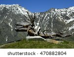 Austria  Tirol  Funny Sculptur...