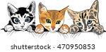 kittens | Shutterstock .eps vector #470950853