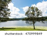 green tree by a pond in the... | Shutterstock . vector #470999849