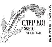 Hand Drawn Fish  Koi Carp   ...