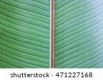 texture on leaf | Shutterstock . vector #471227168