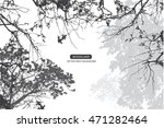 trees and branches silhouette... | Shutterstock .eps vector #471282464