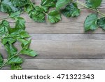 green leaf of mulberry placed... | Shutterstock . vector #471322343