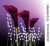 Beautiful Black Calla Lilie...