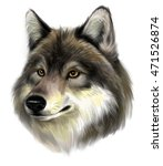 portrait of realistic wolf on... | Shutterstock . vector #471526874