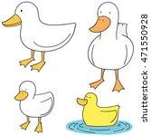 vector set of duck | Shutterstock .eps vector #471550928