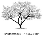 black tree  branch silhouette ... | Shutterstock .eps vector #471676484