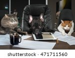 Stock photo businessmen in office dog head and cat employees managers different characters personality 471711560