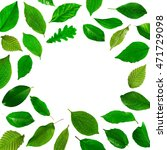 collage of fresh green leaves... | Shutterstock . vector #471729098