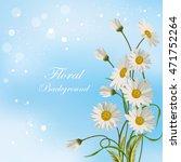 Beautiful White Daisies On Blu...