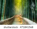 Arashiyama Bamboo Forest In ...
