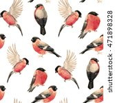 watercolor pattern with bird... | Shutterstock . vector #471898328