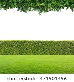 green leaves and green hedge... | Shutterstock . vector #471901496