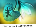 lizard shadow on green sheet... | Shutterstock . vector #472150720