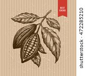 cocoa beans tree illustration.... | Shutterstock .eps vector #472285210