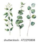 watercolor eucalyptus round... | Shutterstock . vector #472293808
