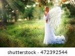 fantasy photo of beautiful... | Shutterstock . vector #472392544
