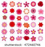 flowers  illustration  | Shutterstock . vector #472460746