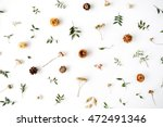 Stock photo yellow dry flowers branches leaves and petals pattern isolated on white background flat lay 472491346